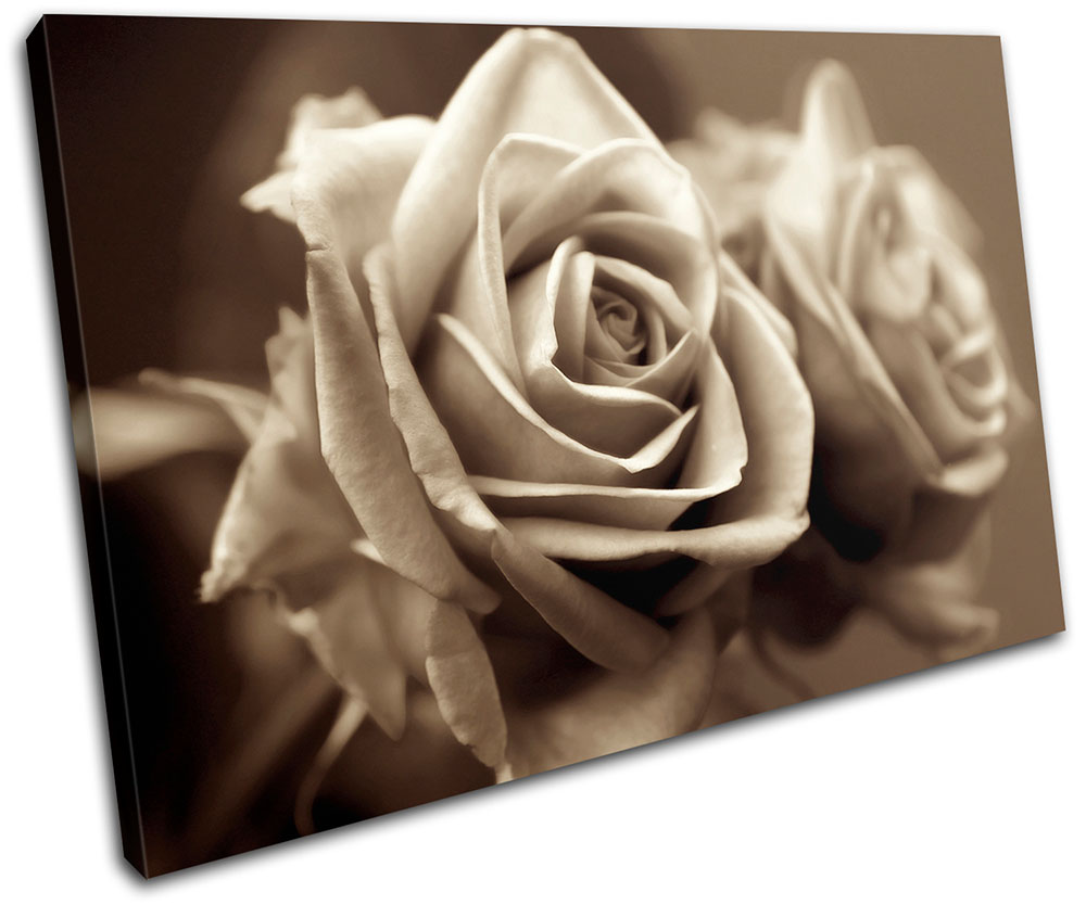 Floral Roses flower  SINGLE CANVAS WALL ART Picture Print VA