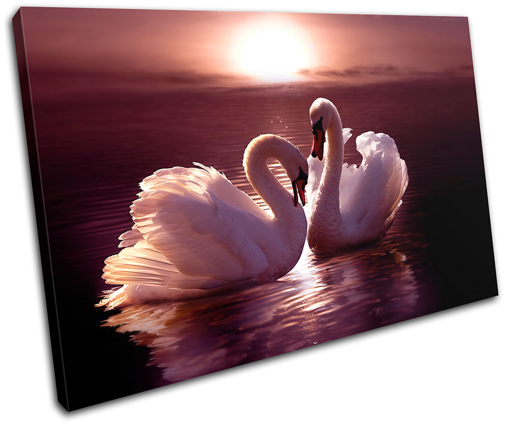 Swans Love Hearts Pink Animals SINGLE CANVAS WALL ART Picture Print